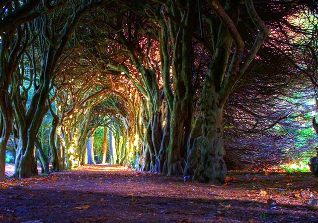 Selo Gormanston, okrug Meath, Irska