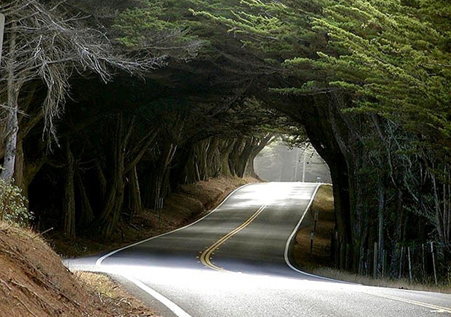 okrug Mendocino, Kalifornija